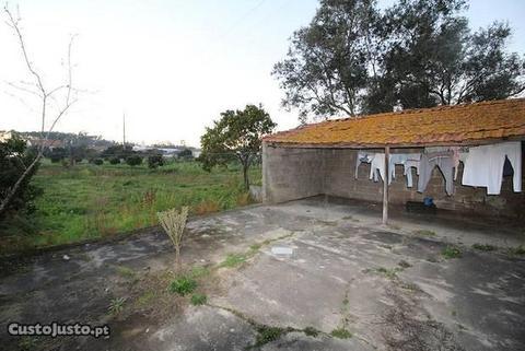 Terreno com ruina (flD1423)