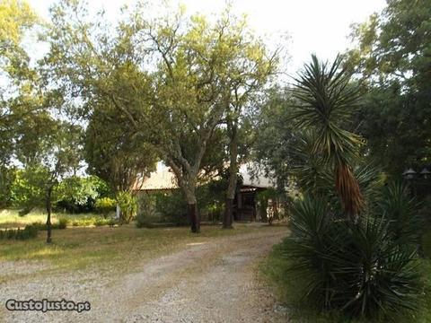 Quinta 4900m² com Moradia R/c em Azeitão