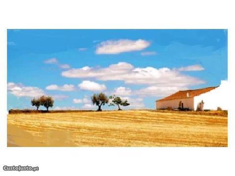 Herdade Odemira Refª 326 (Monte Alentejano)