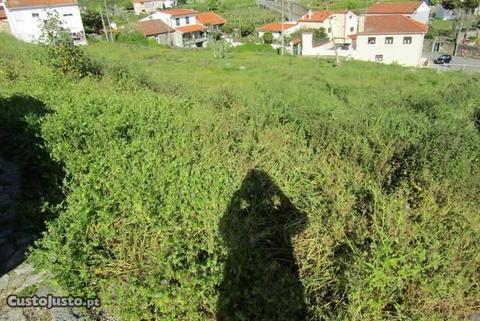Terreno - Vila Praia de Âncora
