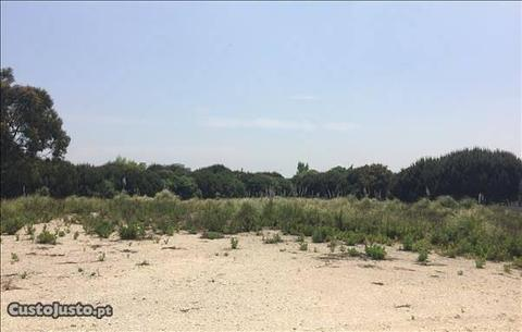 Lote de terreno Tagus Park (ag4562)