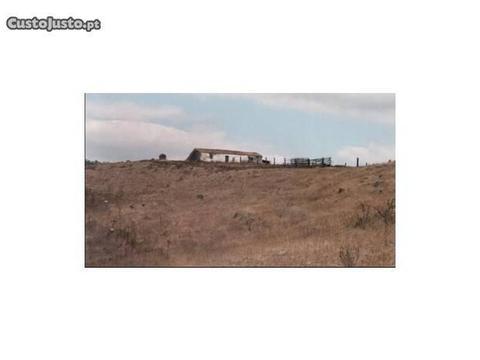 Casa de Campo T0 Ourique