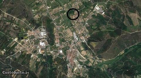 Terreno Construção Arganil